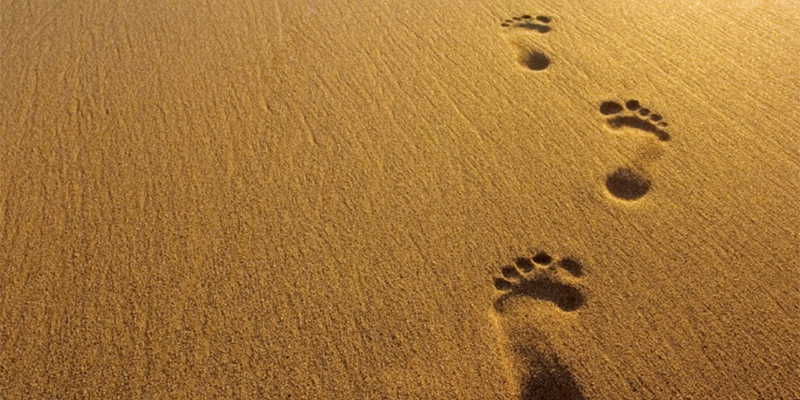 In the Footsteps of the Prophet SAW